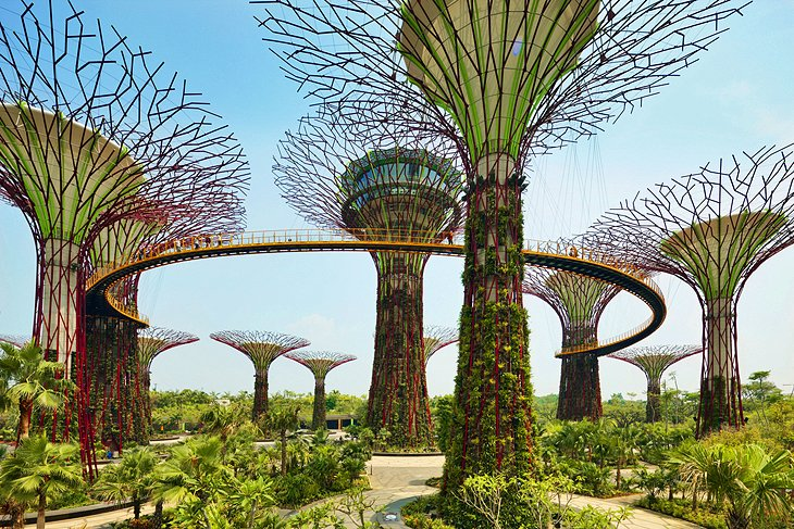 singapore gardens by the bay - Singapore Flyer And Gardens By The Bay Double Domes Package